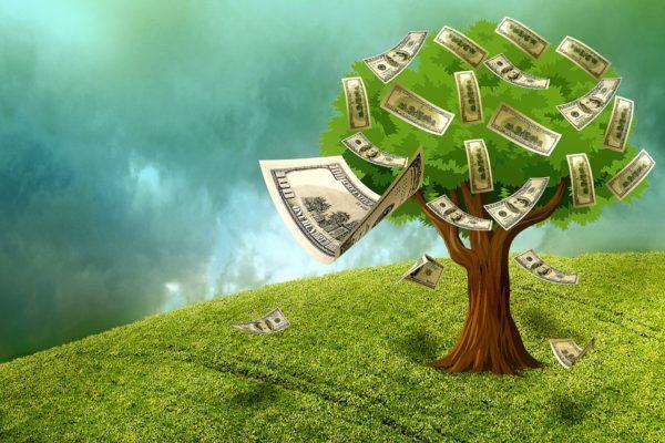 pieniądze nie rosną na drzewach kieszonkowe